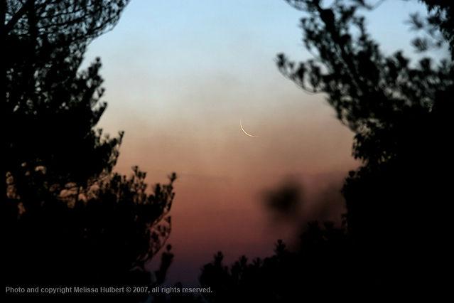 Thin Crescent Moon - 20 Jan 2007-w.jpg