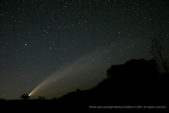410-Comet McNaught-morning-28Jan07-w.jpg