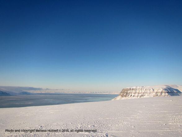 Fjordnibba - 20 March 2015-w.jpg