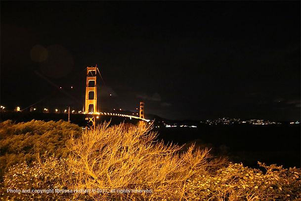 Golden Gate Bridge-San Francisco-USA-3-w