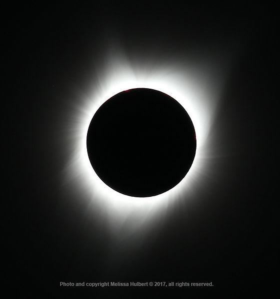 Totality-21 Aug 2017-w.jpg