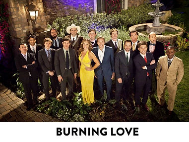 Burning Love is a comedy series produced by Ben Stiller, Mike Rosenstein, Stuart Cornfeld, Jon Stern, and was created and written by Erica Oyama, while her husband, Ken Marino, co-produced, directed and starred in the series. Burning Love is a spoof of reality dating competition show The Bachelor, The Bachelorette. Yahoo! Screen's Comedy Channel, E!, Red Hour Films, Paramount Pictures, Abominable Pictures. Nominated for an Emmy in the Outstanding Special Class - Short-format Live-Action Entertainment Programs category. Cast includes Film and TV actors Ben Stiller, Christine Taylor, Michael Ian Black, Ken Marino, Malin Akerman, Kristen Bell, Jennifer Aniston, Ken Jeong, Adam Scott, June Diane Raphael, Abigail Spencer, Carla Gallo, Natasha Leggero, Ryan Hansen, Michael Cera, Adam Scott, Nick Kroll, Joe Lo Truglio, Rob Huebel, Jerry O'Connell, Adam Brody, Kumail Nanjiani, Martin Starr, Colin Hanks, Paul Scheer, Nick Thune, Seth Rogen, Rob Corddry, Tom Lennon, Jeff Ross