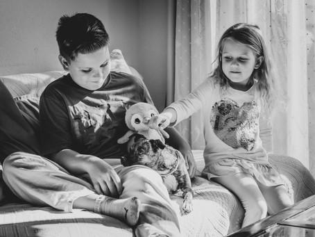 Lifestylowa sesja w domu, z dziećmi i...psem.
