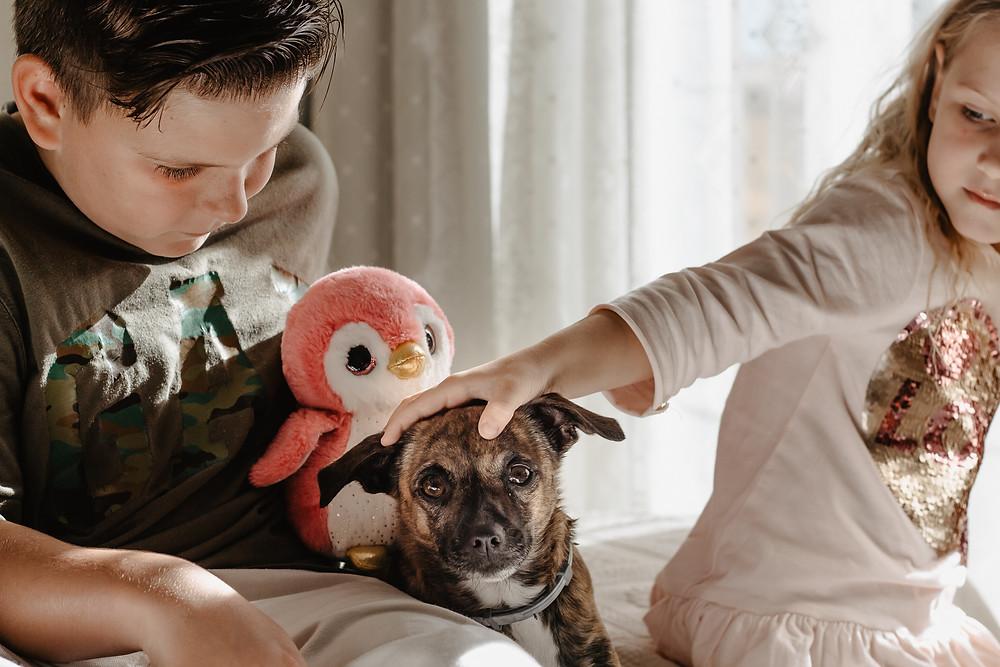 sesja z psem lifestyle teneryfa Kamila Zienkiewicz