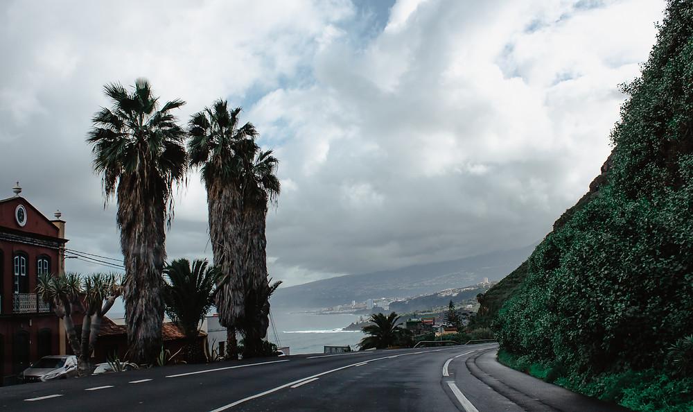 Autostrada na Teneryfie, palmy,  sesja fotograficzna