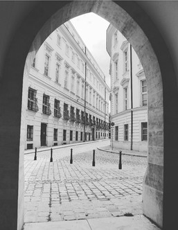 The black and white streets of Vienna
