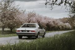 BMW E24