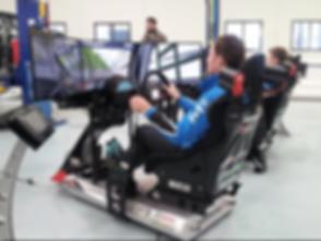 sim driver.png