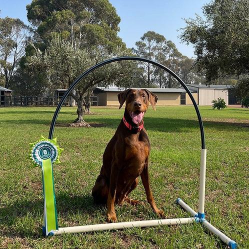 Hoopers Hoop Set