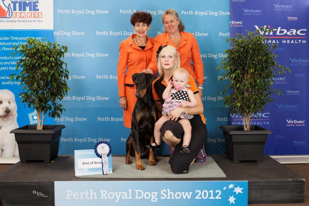 Perth Royal 2012