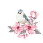 птица-и-цветки-самана-коррекций-высокая-