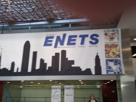 E NETs Conference Barcelona March 2017