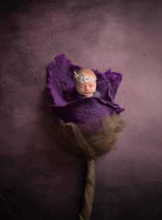Flower Composite- 4.jpg