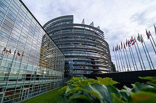 european parliament ..jpg