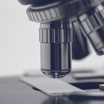Ilume Scottsdale | Microscope