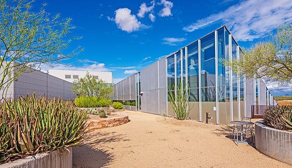 Ilume Scottsdale | Rooftop Park