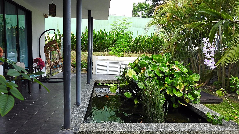 koi terrace area