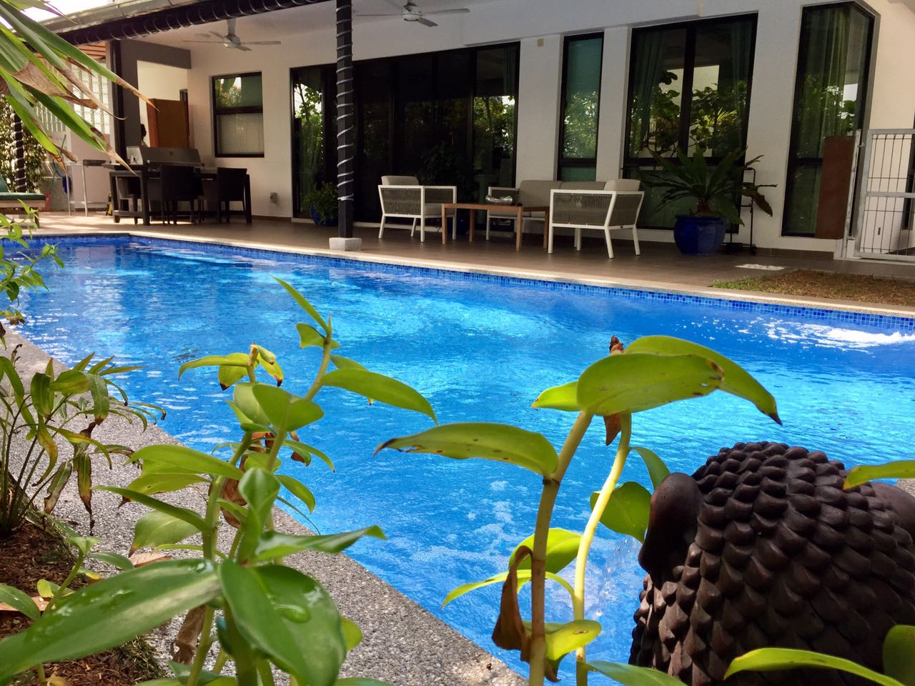 villa setia pool