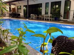 villa setia pool