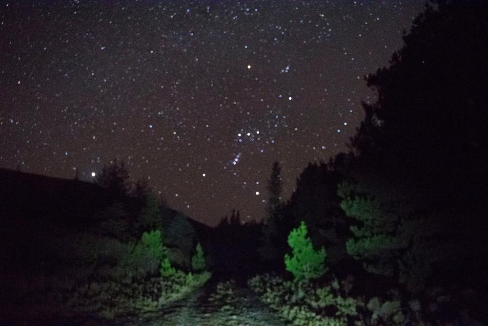 Stargazing in Mayo Dark Sky Park