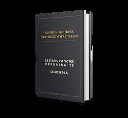 COUVERTURE COVER 3D LIVRE AU DELA STRESS.png