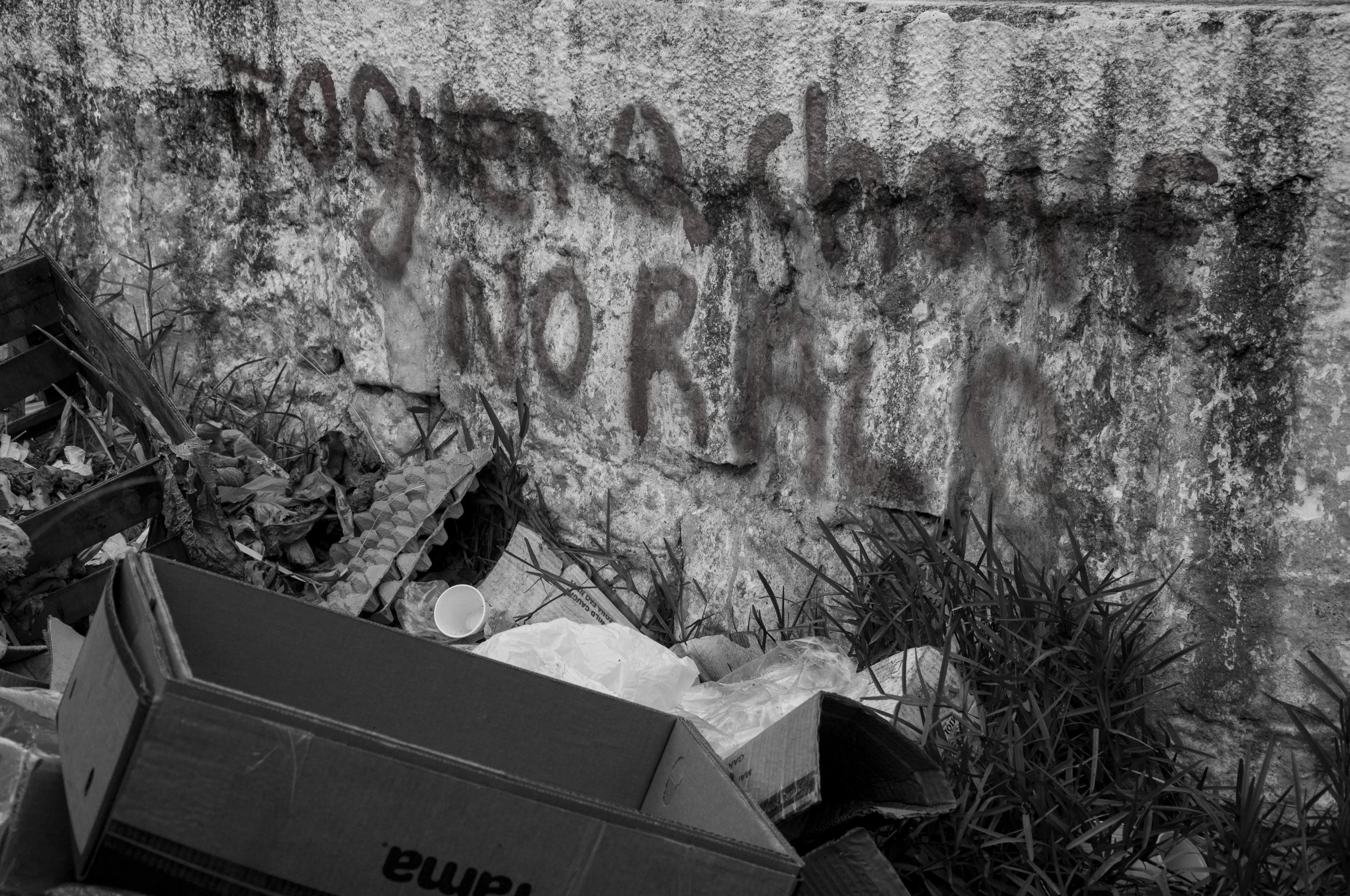 muro-1480_LuMenaBarreto.jpg