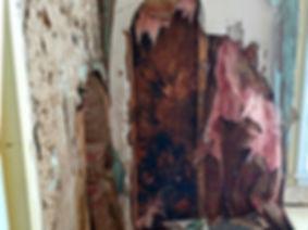 mold-remediation-bathroom-before-2-900.j