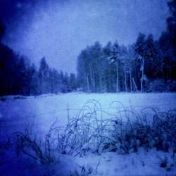 Even When Everything Seems Frozen