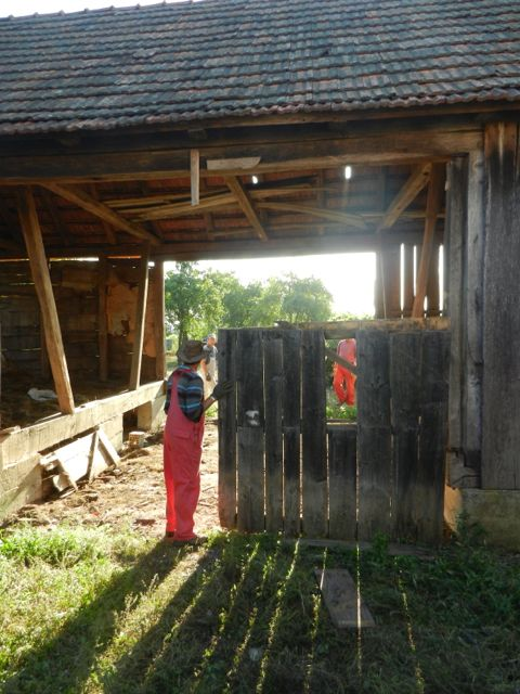 Barn door freed