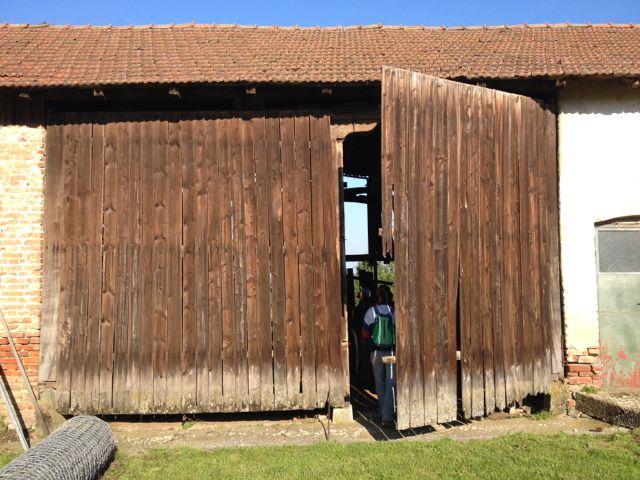Very large barn doors