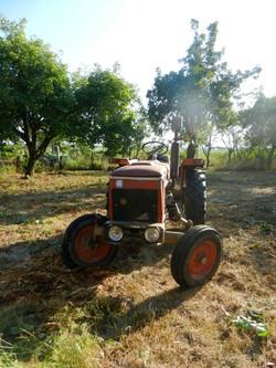 Zetor vintage tractor