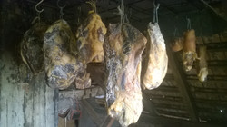 Curing smoked  meat