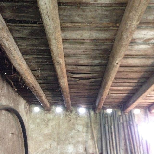 Pine beams on ceiling