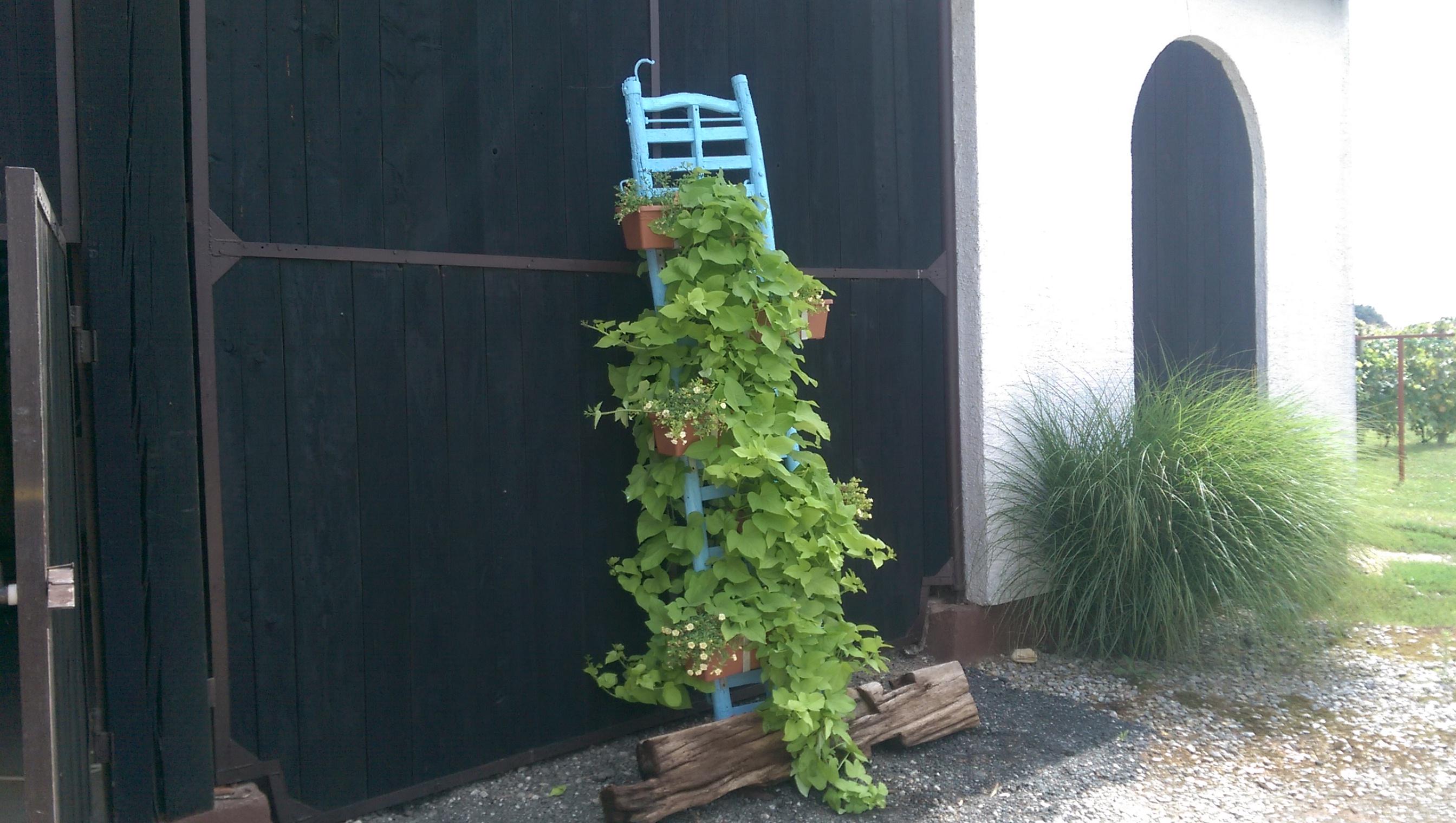 Vintage Horse Cart ladder