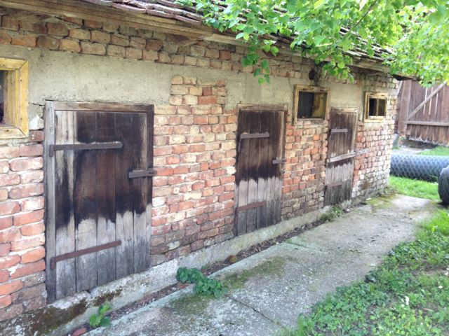 Small stable doors