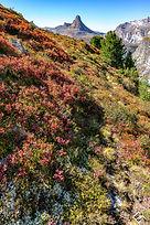 Swiss Alps Autumn_web_©Markus Casutt.jpg