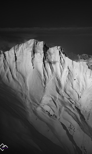 Terri Avalanches HV