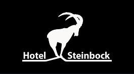 hot-steinb_logo_dachberg_5_umgekehrt.png