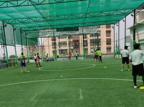 Terrace Sport Nets