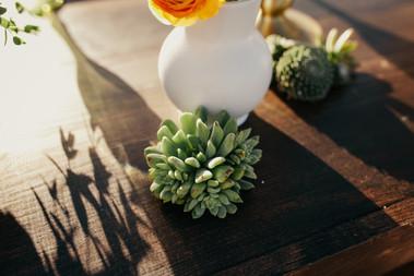 Krista Hawryluk Photography - Love me Do - Desert Wedding-1508.jpg