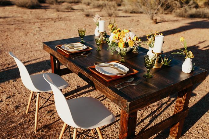 Krista Hawryluk Photography - Love me Do - Desert Wedding-1524.jpg