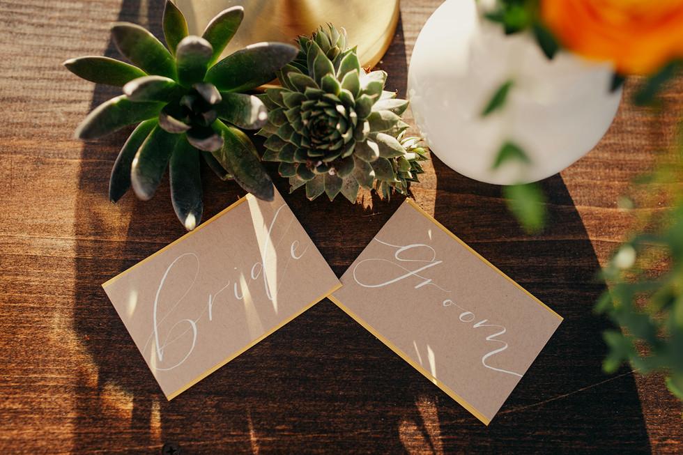 Krista Hawryluk Photography - Love me Do - Desert Wedding-1506.jpg