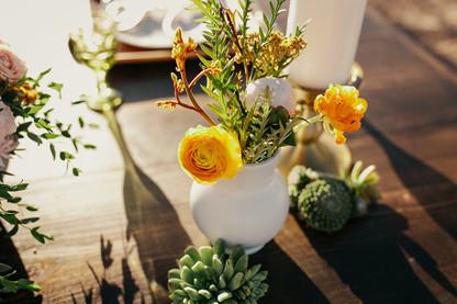 Krista Hawryluk Photography - Love me Do - Desert Wedding-1509.jpg