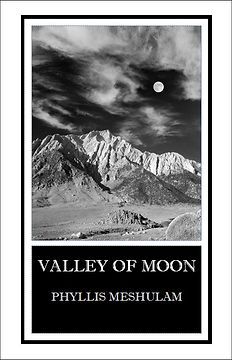 Valley of Moon by Phyllis Meshulam