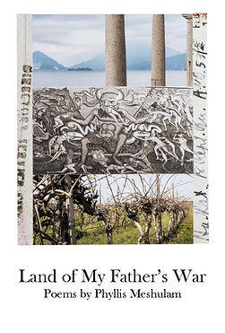 Land of My Father's War Poems by Phyllis Meshulam
