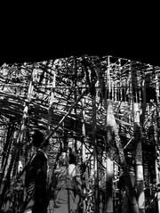 DigitalSilhouette03.jpg