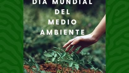 Día Mundial del Medio Ambiente: Desafíos para un mundo mejor
