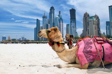 Emiratos Árabes crea un Ministerio de la Felicidad