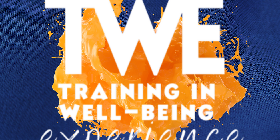 Training in Well-Being Experience