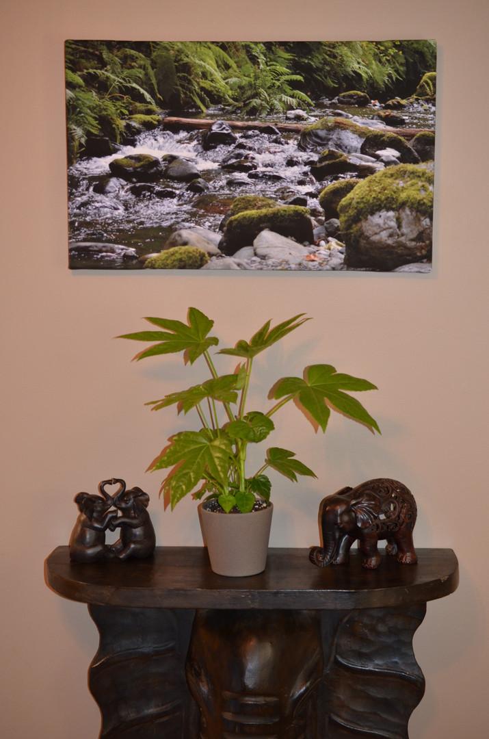 Paper Plant in Pandora Pot